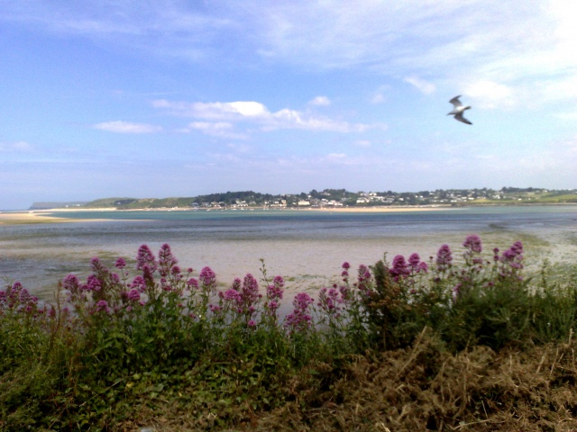 View from Iron Bridge - Padstow, 2014